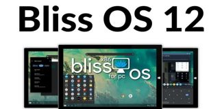 Bliss OS 12