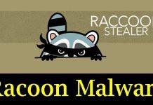 Racoon Stealer Malware