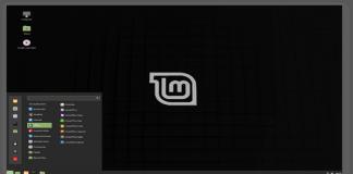 "Linux Mint Released LMDE 4 Called ""Debbie"", Based on Debian OS"