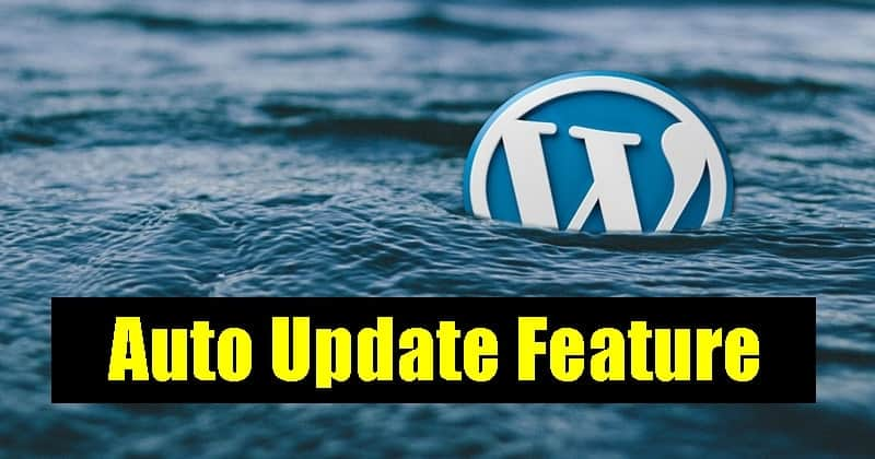 WordPress Going to Introduce Auto-Update Feature for Themes and Plugins