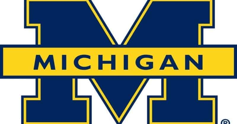 NetWalker Ransomware Breached Michigan University