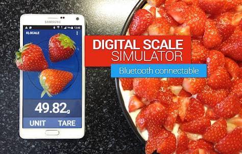 Digital Scale Simulator Adfree