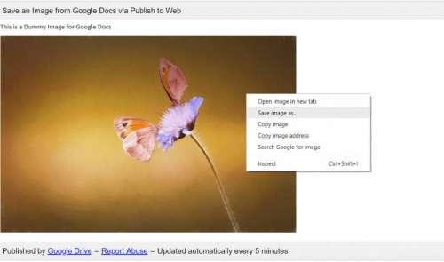 كيفية تنزيل الصور من مستندات Google (أفضل 5 طرق)
