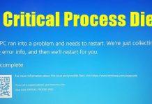 Fix Critical Process Died