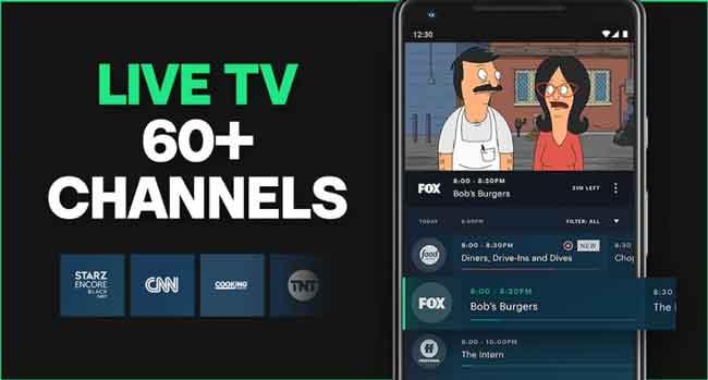 Get Hulu Premium